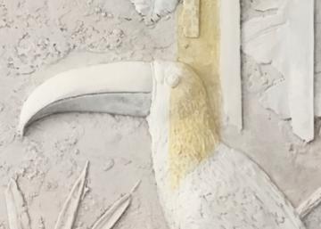 plaster relief tucano made from Michela Ciappini